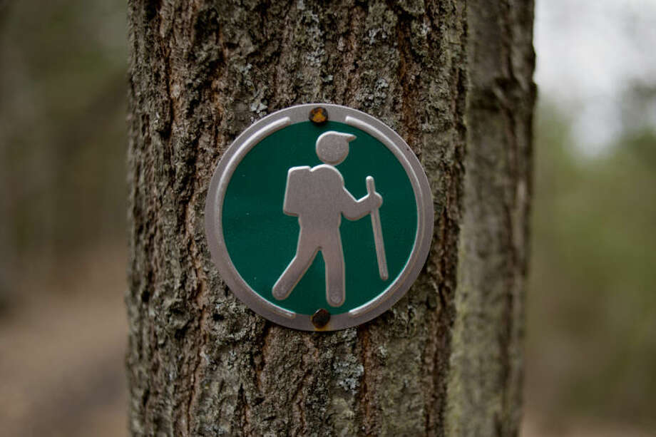 NEIL BLAKE | nblake@mdn.netA trail marker marks the path through the Little Forks Conservancy's Riverview Natural Area along the Tittabawassee River. Photo: Neil Blake/Midland  Daily News