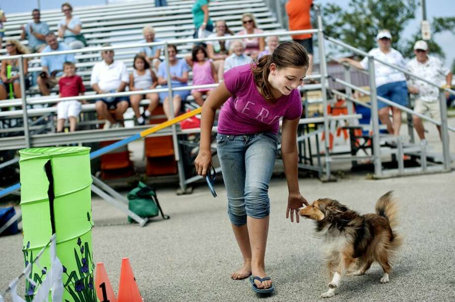 Jessica Yeska, 14, praises her Shelty dog, Hailey, after running through the agility course during the Midland Michigan Kennel Club Dog Extravaganza Wednesday at the Midland County Fair. Yeska lost her flip-flop while guiding her dog through the course. Photo: NICK KING | Nking@mdn.net