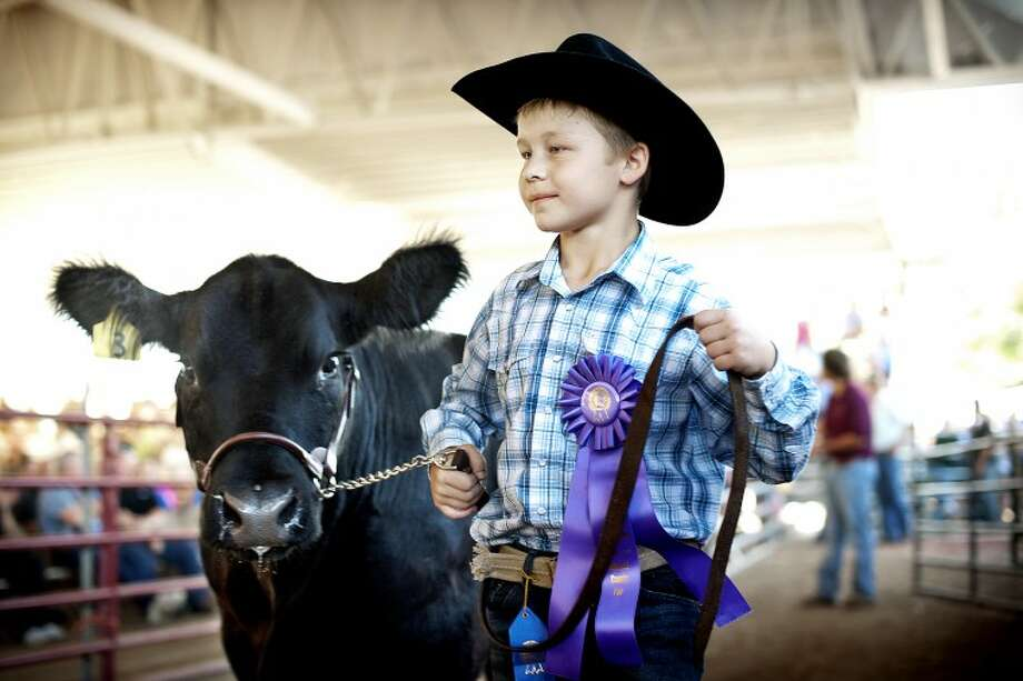 "Gabe McGuire, 9, of Breckenridge shows his steer Earl in the large animal auction on Thursday at the Midland County Fair. ""I was very nervous,"" McGuire said of his first time showing an animal at the fair. ""It was kinda sad to sell Earl. He's a very nice cow."" Photo: THOMAS SIMONETTI 
