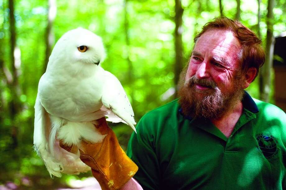Snowy, a snowy owl, is held by Joe Rogers June 13 at Wildlife Recovery Association, a Midland County sanctuary for injured and recovering raptors. Photo: Neil Blake/Midland  Daily News