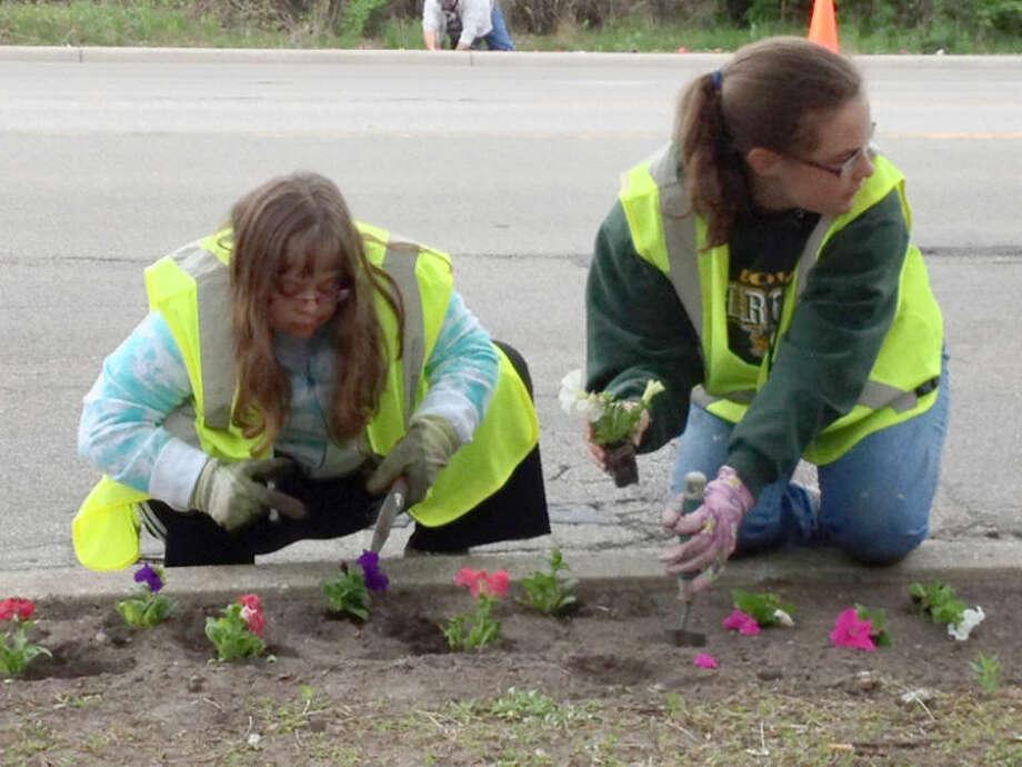Photo providedAmanda Brown, left, and Katie Waters plant petunias on Eastman Road.