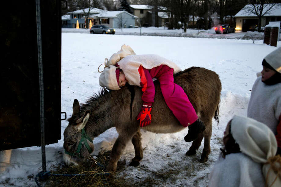 NEIL BLAKE   nblake@mdn.net Emma Stern, 6, hugs Ranger the donkey as Sophie Stern, 3, and Cayden Nieto, 6, look on as they prepare for their live nativity at the Midland Church of the Brethren on Christmas Eve. This is the fourth year that the Stern family has put on the nativity in front of the church. Last year, Sophie played the baby Jesus but she outgrew the part and was a shepherd this year along with Emma and Cayden. Photo: Neil Blake/Midland  Daily News