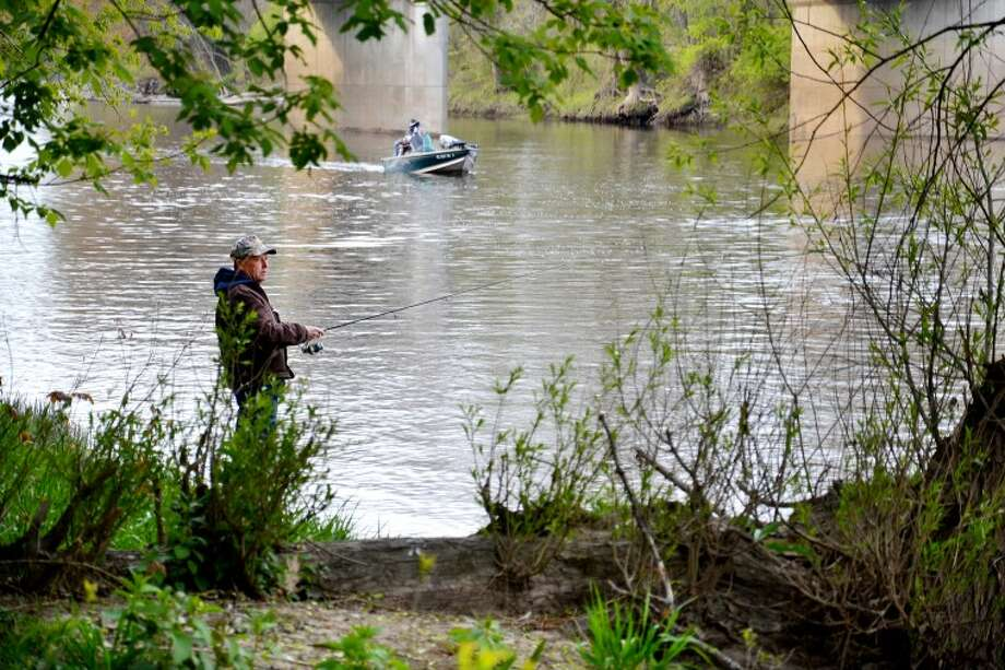 Photo for the Daily News by Steve Griffin Richard Reid of Midland, having caught and released one legal-length walleye from the Tittabawassee river bank, tries for another, while boaters in the background try different tactics.
