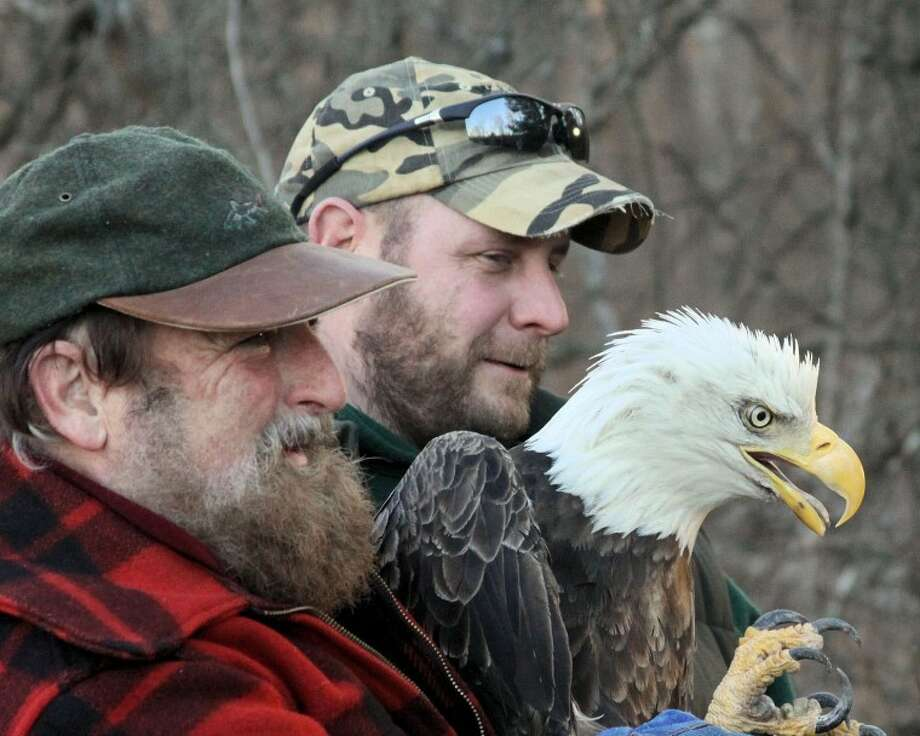 Photo by Audrey DiadiunJoe Rogers, left, and Jeff Corsor of the Department of Natural Resources are shown with the eagle shortly before its release.