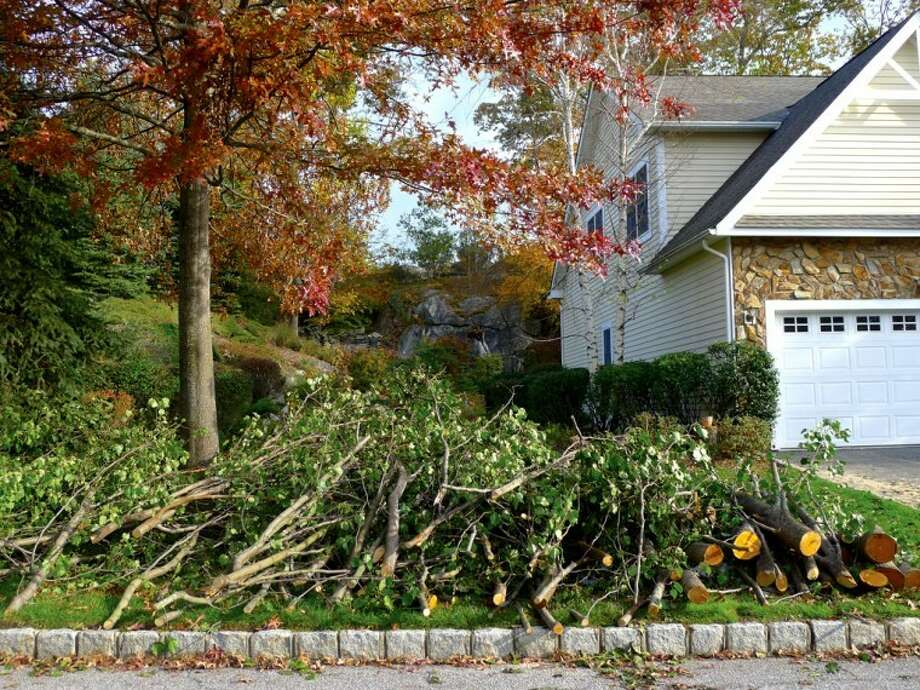 Getting trees cutback or cut down can be a task performed before the winter months.