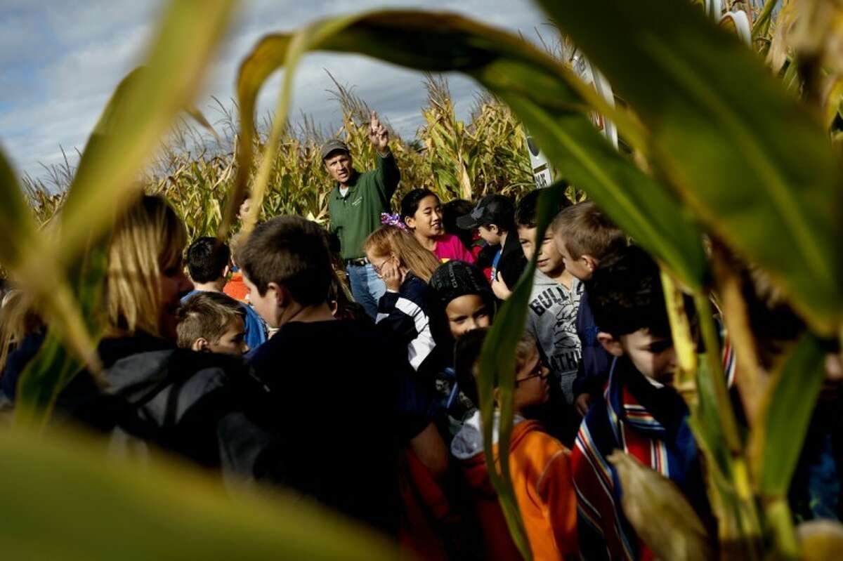 SEAN PROCTOR | photo@mdn.netRandy Laurenz points to the corn maze after finishing his presentation about corn crops to a group of fourth-graders from St. John's Lutheran and St. Brigid Catholic schools Tuesday morning at the Laurenz family farm in Porter Township. About 600 students from Midland County schools gathered at the farm to attend the annual farm tour.