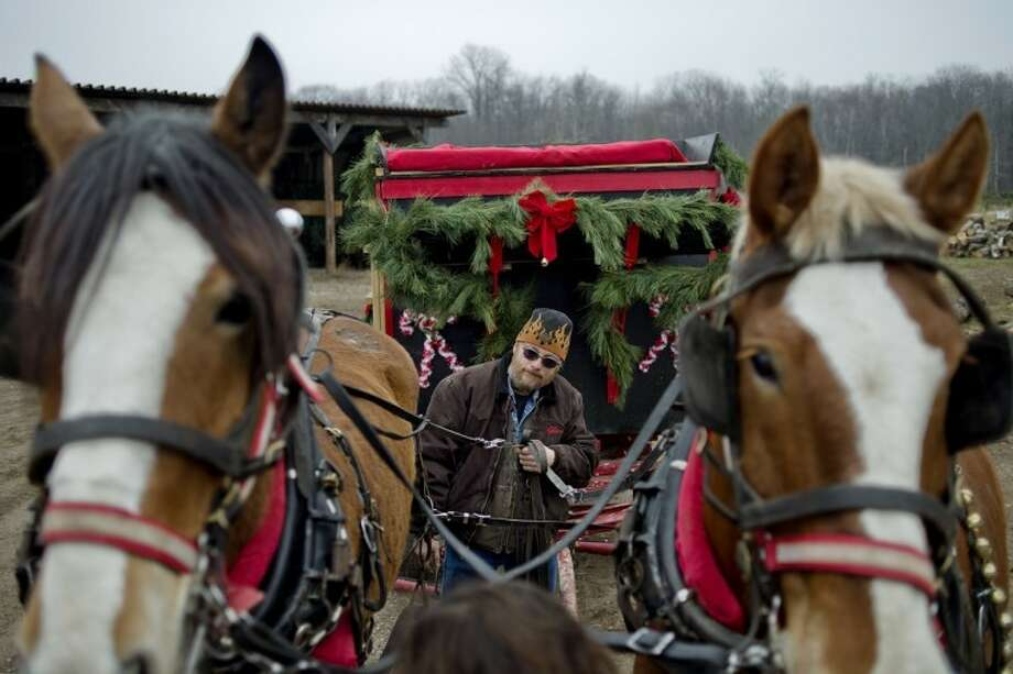 NICK KING | nking@mdn.net Glenn Sasse, center, of Sassarosa Farm in Rhodes, and Julie Schneider hook up horses Royal, left, and Jill to a wagon as they prepare to take guests on rides Saturday at Doumel Tree Farms in Midland. Photo: Nick King/Midland  Daily News