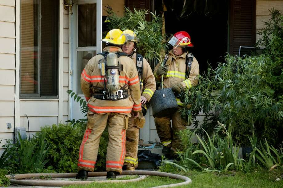NEIL BLAKE | nblake@mdn.netMidland Fire Department firefighters remove legal medical marijuana plants from a duplex on Henry Street after putting out a fire at the residence on Tuesday evening. Firefighters discovered the plants while fighting the fire. Photo: Neil Blake/Midland  Daily News
