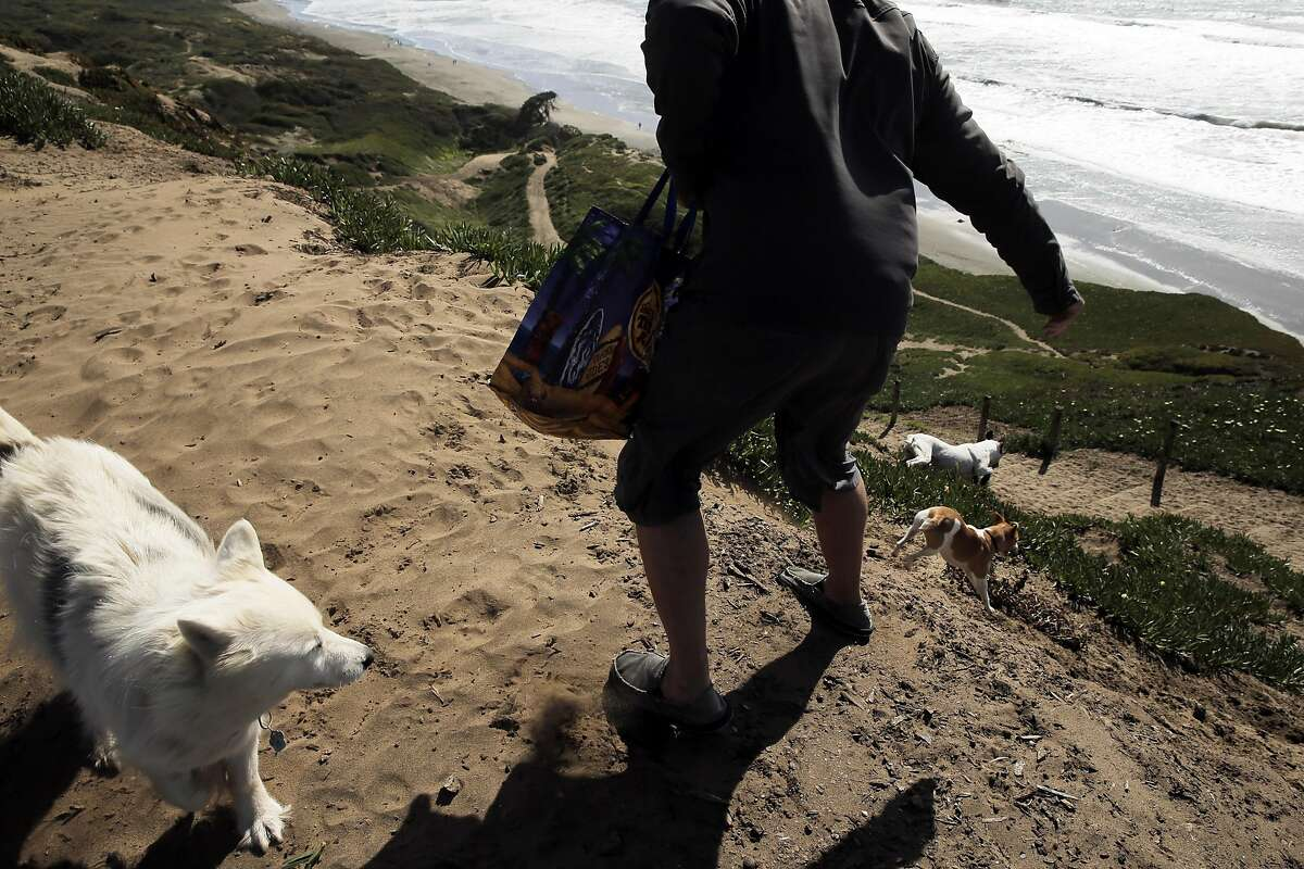 In this file photo, Paul Montiezy throws a ball for his dogs as he and others enjoy the area at Fort Funston in San Francisco, Calif., on Tuesday, March 22, 2016.