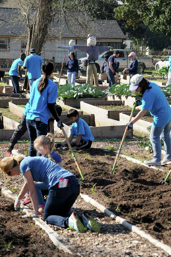 Volunteers prep beds for planting and harvest mature produce to take to food pantries and fairs.
