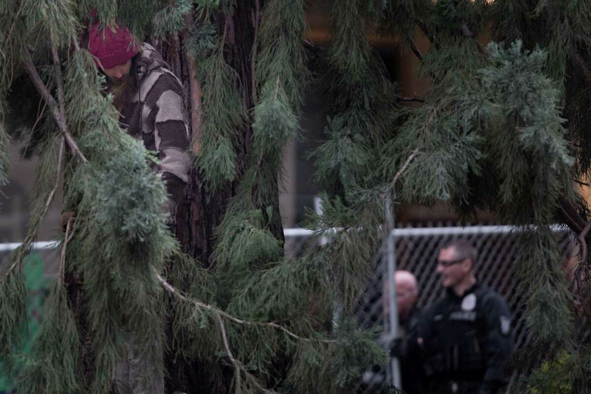 #Manintree touches ground for the first time in over 24 hours after sitting in a sequoia tree at 4th Ave. and Stewart St., in Seattle on Wednesday, Mar. 23, 2016. The man sat in the tree for nearly 24 hours, neglecting police efforts, before coming down safely.