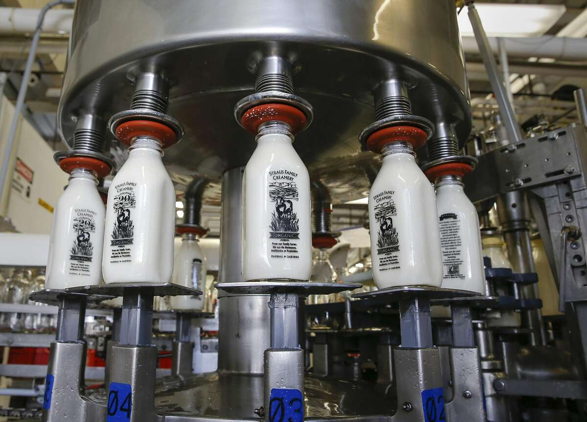 The organic non-GMO whole milk cream-top production line at the processing plant of the Straus Family Creamery in Marshall, California, on Thurs. March 24, 2016.