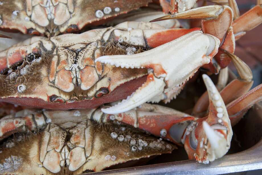 Dungeness crab from Oregon are sold at Fisherman's Wharf on Thursday, March 24, 2015 in San Francisco, Calif. Photo: Santiago Mejia, Special To The Chronicle