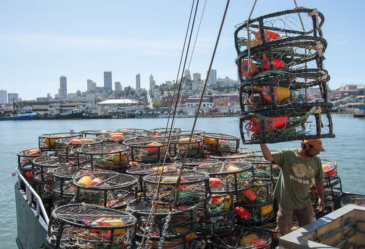 Deckhand Steve Manley prepares crab pots on the fishing vessel, The Medallion, at Pier 45 on Thursday, March 24, 2015 in San Francisco. Commercial Dungeness crab season remains closed for part of California north of Point Reyes, plus in Oregon and Washington.