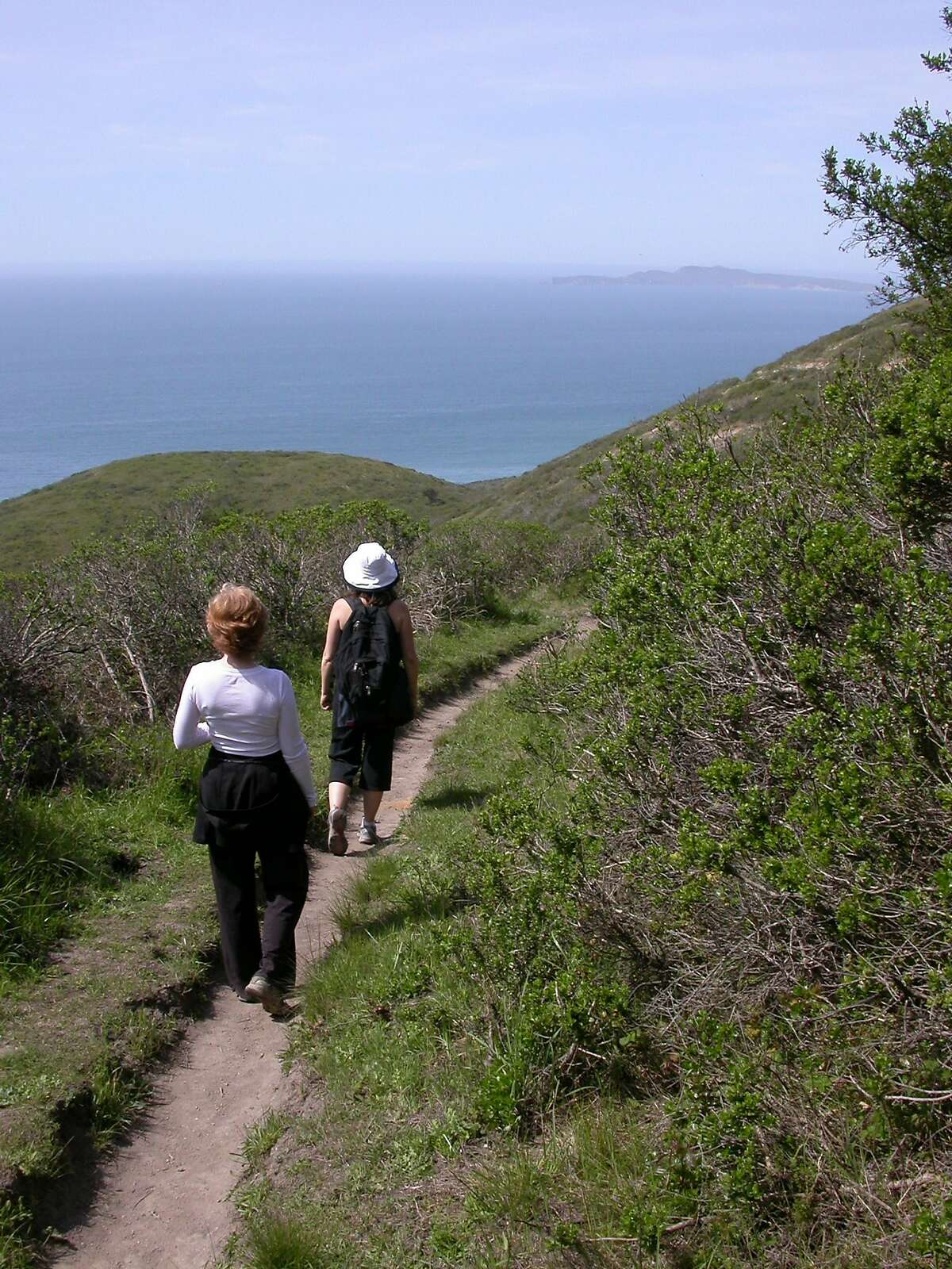 On the Sky Trail Loop, you emerge from forest for views of Drakes Bay, Chimney Rock Headlands and Limantour.