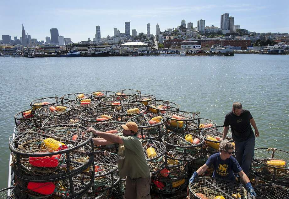 From left: Deckhand Steve Manley, captain Sarah Bates and deckhand Daniel Calvi prepare crab pots on the fishing vessel, The Medallion, at Pier 45 on Thursday, March 24, 2015 in San Francisco, Calif. The commercial ban will be lifted Friday after it was postponed last November when state health officials found deadly levels of a neurotoxin called domoic acid in Dungeness crab along the coastline. Officials said the crab no longer pose a significant human risk. Photo: Santiago Mejia, Special To The Chronicle