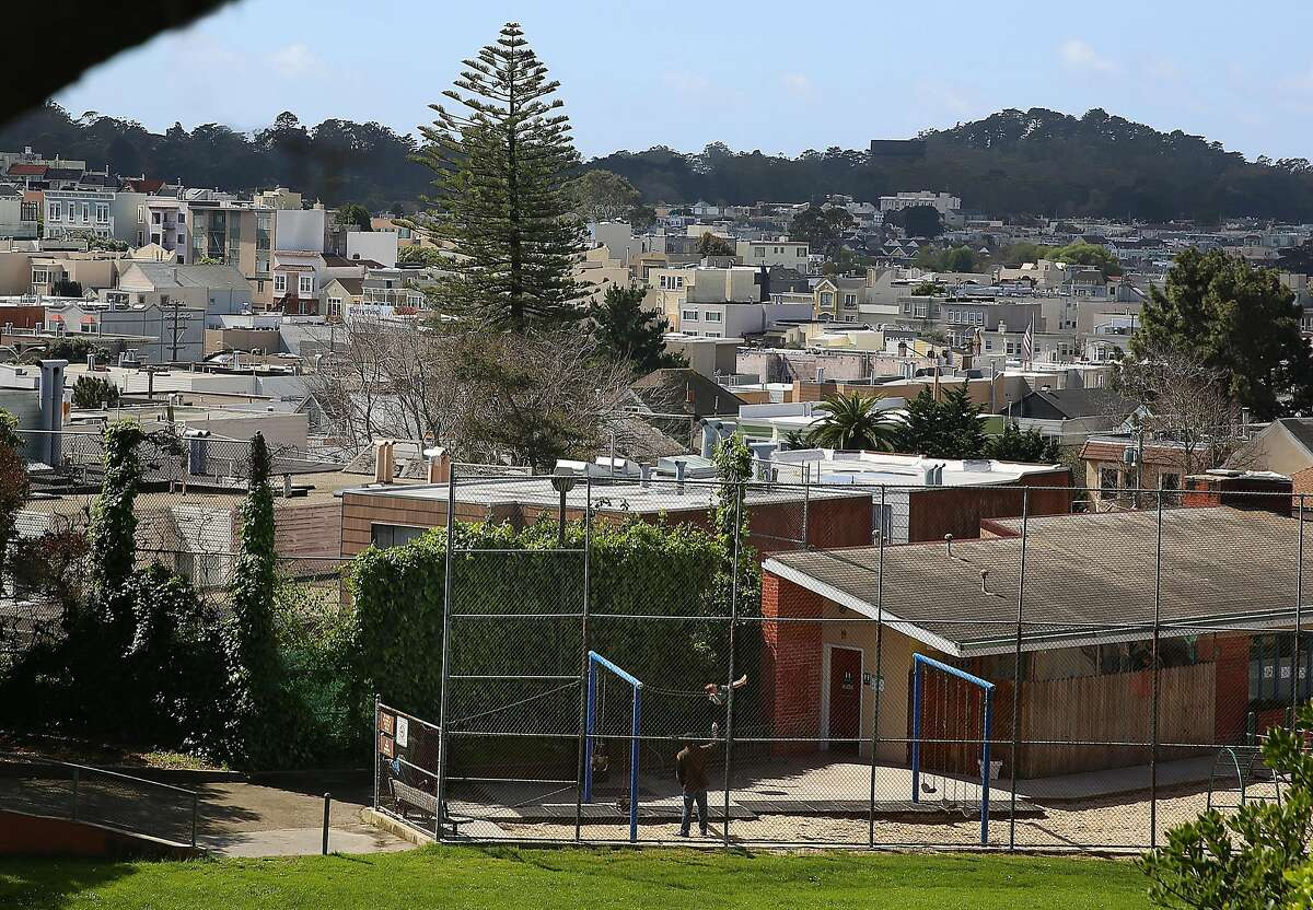 The tree at 46 Cook St. seen from Laurel Hill playground in San Francisco, California, on tuesday, march 22, 2016.