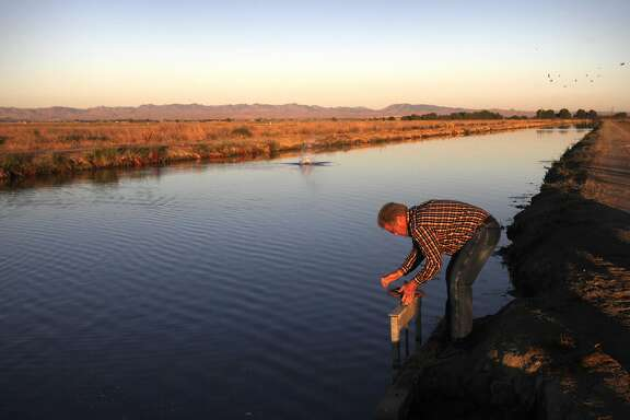 "Ditch tender for San Luis Canal Company Dean Peck twists open a gate along the Arroyo canal to release water to a farmer while checking on meters and gates in the area as he delivers water July 24, 2014 near Los Banos, Calif. Most Central Valley farmers received no more than a 5 percent water allotment this season from government water sources, leaving many farmers with no choice but to pump ground water to keep their businesses afloat. The San Luis Canal Company is a private water company that sells to nearly 100 farmers working 45,000 acres in the Los Banos area. The company has historic water rights allowing it to ship water from the San Joaquin River even in dry years, and it also supplements its supply with a small amount of ground water. Over the past few years, though, Chase Hurley, General Manager of the San Luis Canal Company, has been concerned about the long-term effects of heavy ground water pumping from nearby land. Hurley and others have found that the ground in certain areas is sinking half to a quarter of a foot a year because of the pumping. The sinking ground has brought up concerns with possible flooding into nearby farmland from a dirt canal designed for routing flood water past the area. Hurley is also concerned that the company's dam will begin losing water as the land continues to sink. Farmers in the area are working together to try and curb the problem themselves by replenishing the aquifer. One of the plans involves leaving specific acres of land inactive with the intention of using it to capture water when it does rain again, says Hurley. Local farmers stand to lose business if the ground water supply declines, and they also lose money through damaged wells as the ground sinks. The practice of pumping ground water is not new, says Case Vlot, a dairy farmer who started ""Vlot Brother's Dairy and Calf Ranch"" with his brother from nothing in the 90's in Chowchilla. The difference, he says, is that today the population has increased significant"