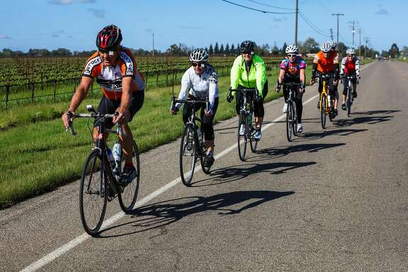A group of cyclists, led by Kandas Vaccarezza (third from left), bike past vineyards as they ride through Lodi, California, on Tuesday, March 22, 2016.