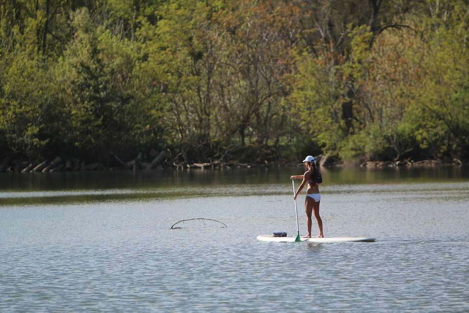Kristi Johnson, of Lodi, navigates down the Lower Mokelumne River on a stand-up paddle board. Photo: Spud Hilton, The Chronicle