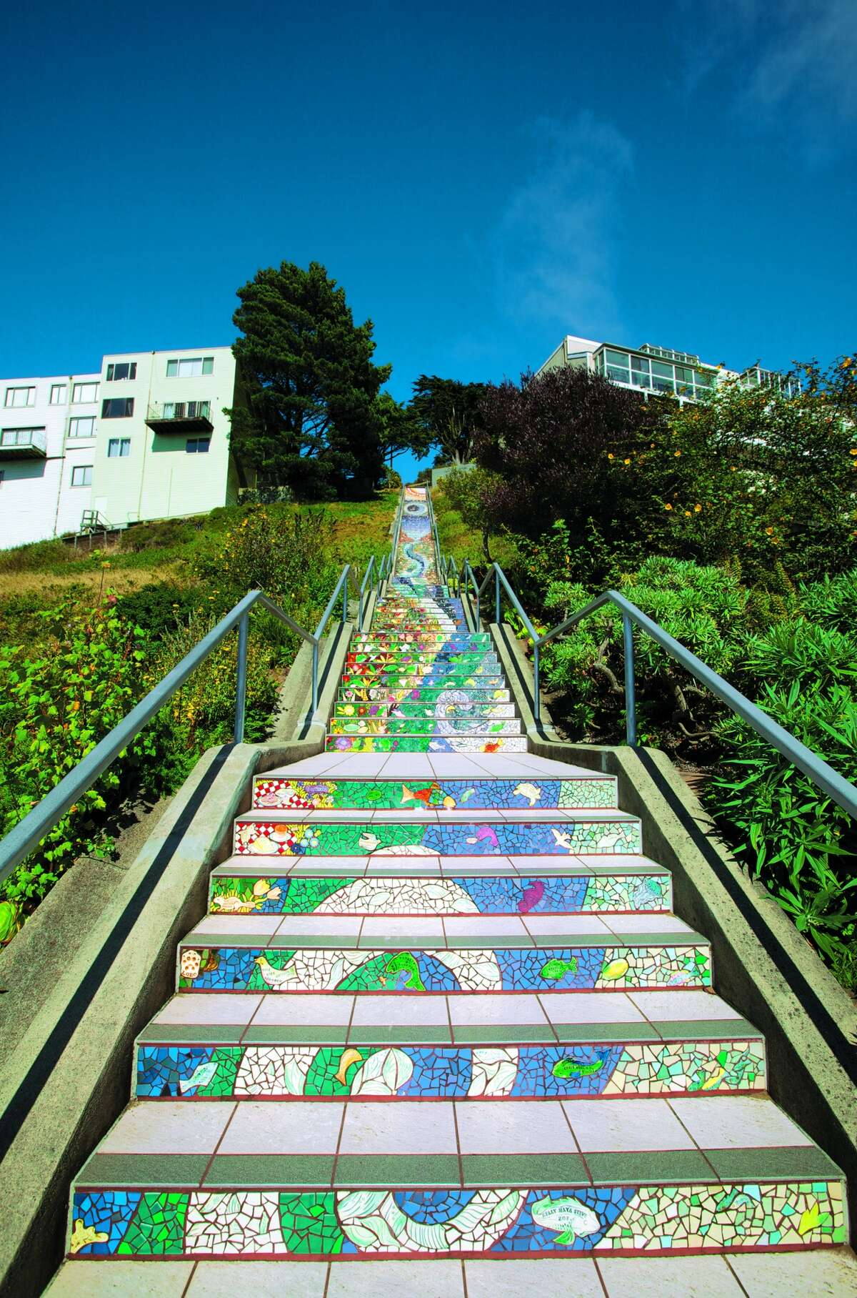 The 16th Avenue Tiled Steps is an impressive community project created in 163 separate panels by different artists, working with volunteers. The steps are an unexpected surprise in the Golden Gate Heights neighborhood. Watch a video on the history of the steps.
