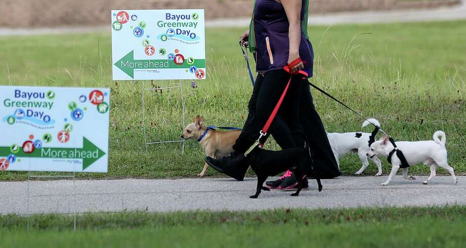 Signage in full display for the second annual Bayou Greenway Day along the White Oak Bayou Greenway on Saturday, March 26, 2016, in Houston. Photo: Elizabeth Conley, Houston Chronicle / © 2016 Houston Chronicle
