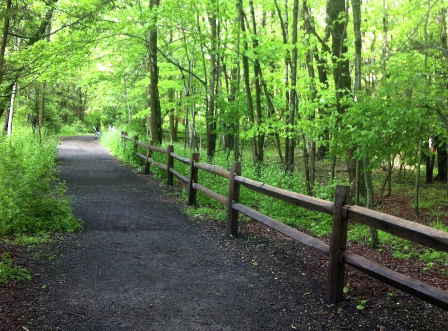 A series of springtime walks is planned through the Larsen Sanctuary of the Connecticut Audubon Society. Photo: Contributed Photo / Contributed Photo / Fairfield Citizen