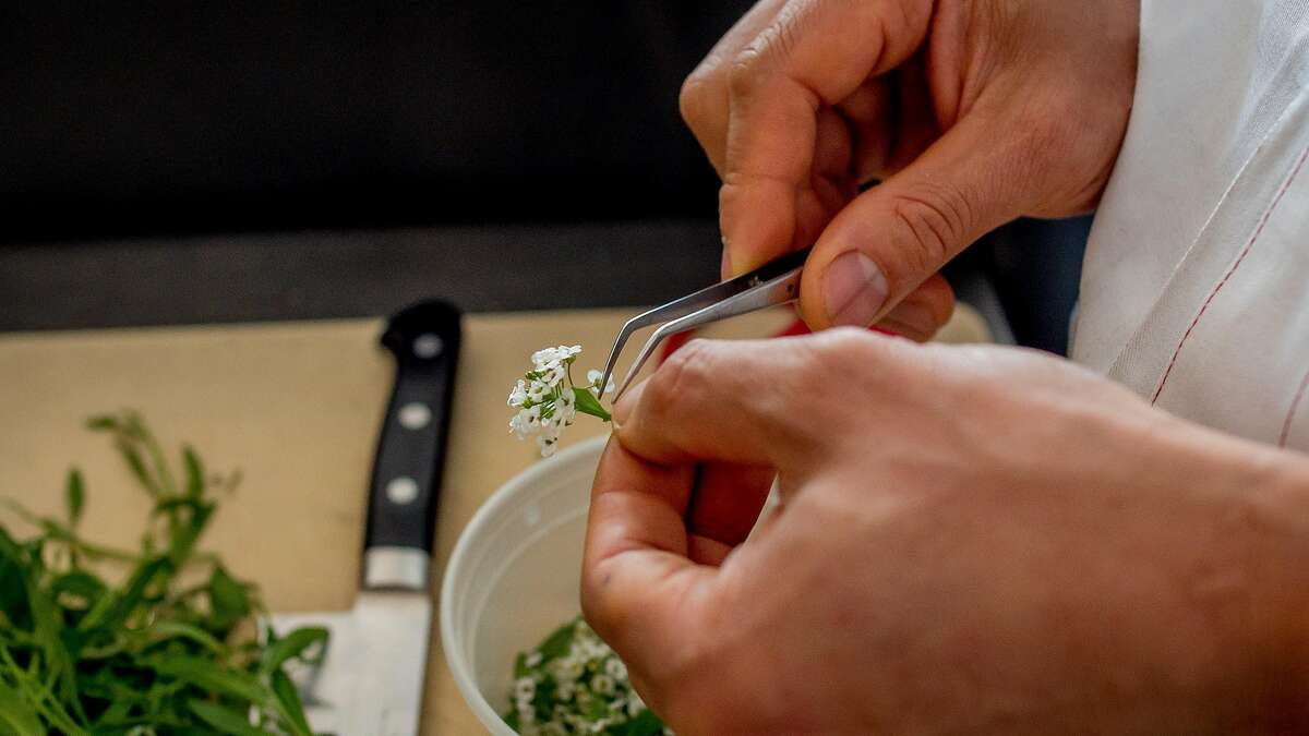 Chef James Syhabout picks flowers with tweezers at Commis in Oakland, Calif., on March 26th, 2016.