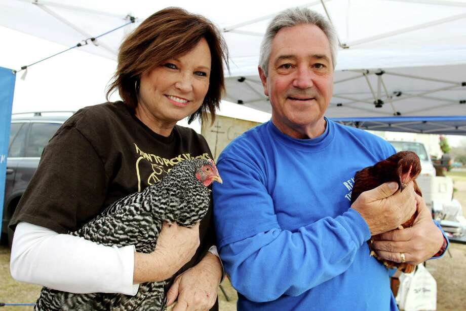 Diane and Ed Roberson with Rent the Chicken are preparing to rent chickens to residents who want to get eggs from their backyards. Photo: Suzanne Rehak, Freelance Photographer