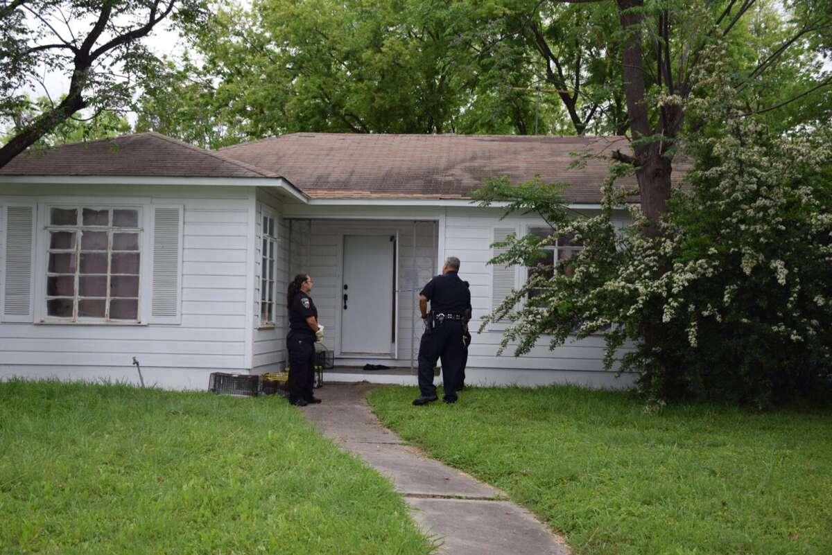 San Antonio police and investigators with Animal Care Services take about 30 cats into custody at a vacant home in the 2500 block of West Summit Avenue on March 29, 2016.