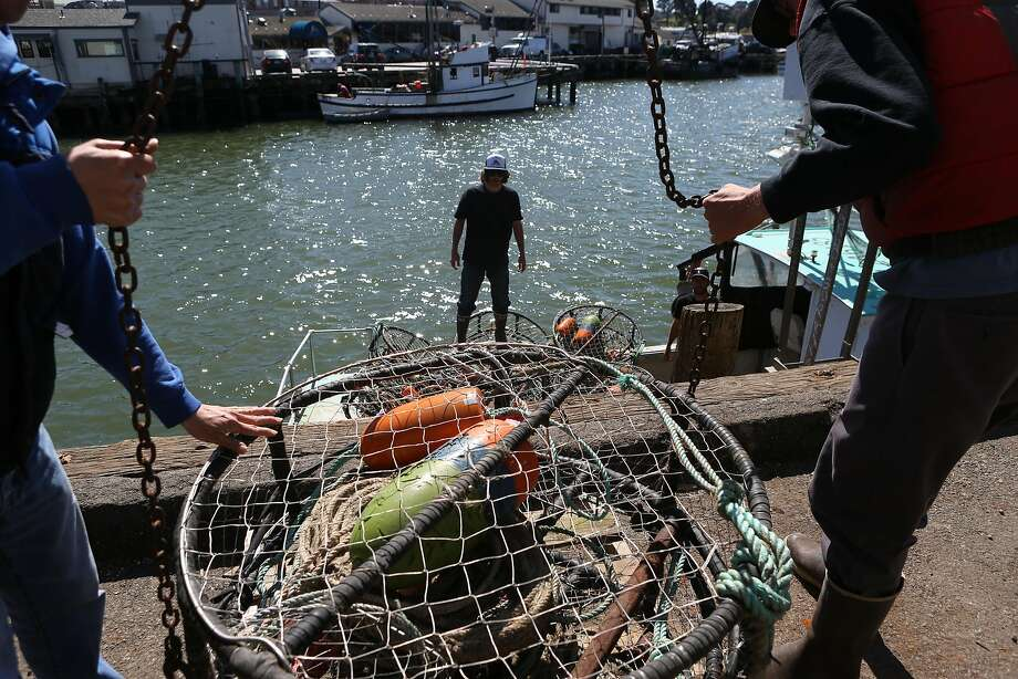 Peter Ung (left) and Nick Krieger (right) help steer the crab traps that are being lifted onto the boat to Sam Jepson (center) at 440 Jefferson St. San Francisco, Calif. on today Tuesday, March 29, 2016. Photo: Amy Osborne, Special To The Chronicle