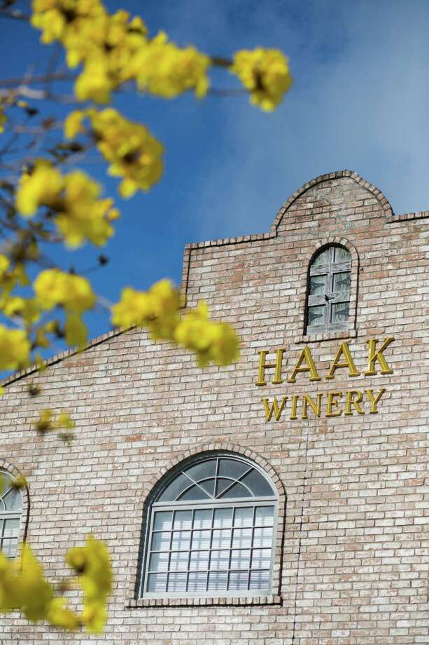 The winery at Haak Vineyards & Winery consists of more than 25,000 sq. ft., including an 1,800 sq. ft. cellar, which is used for storing and aging wines in oak barrels. The vineyard is three acres filled with 1800 vines. Monday, March 14, 2016, in Santa Fe. ( Marie D. De Jesus / Houston Chronicle ) Photo: Marie D. De Jesus, Staff / © 2016