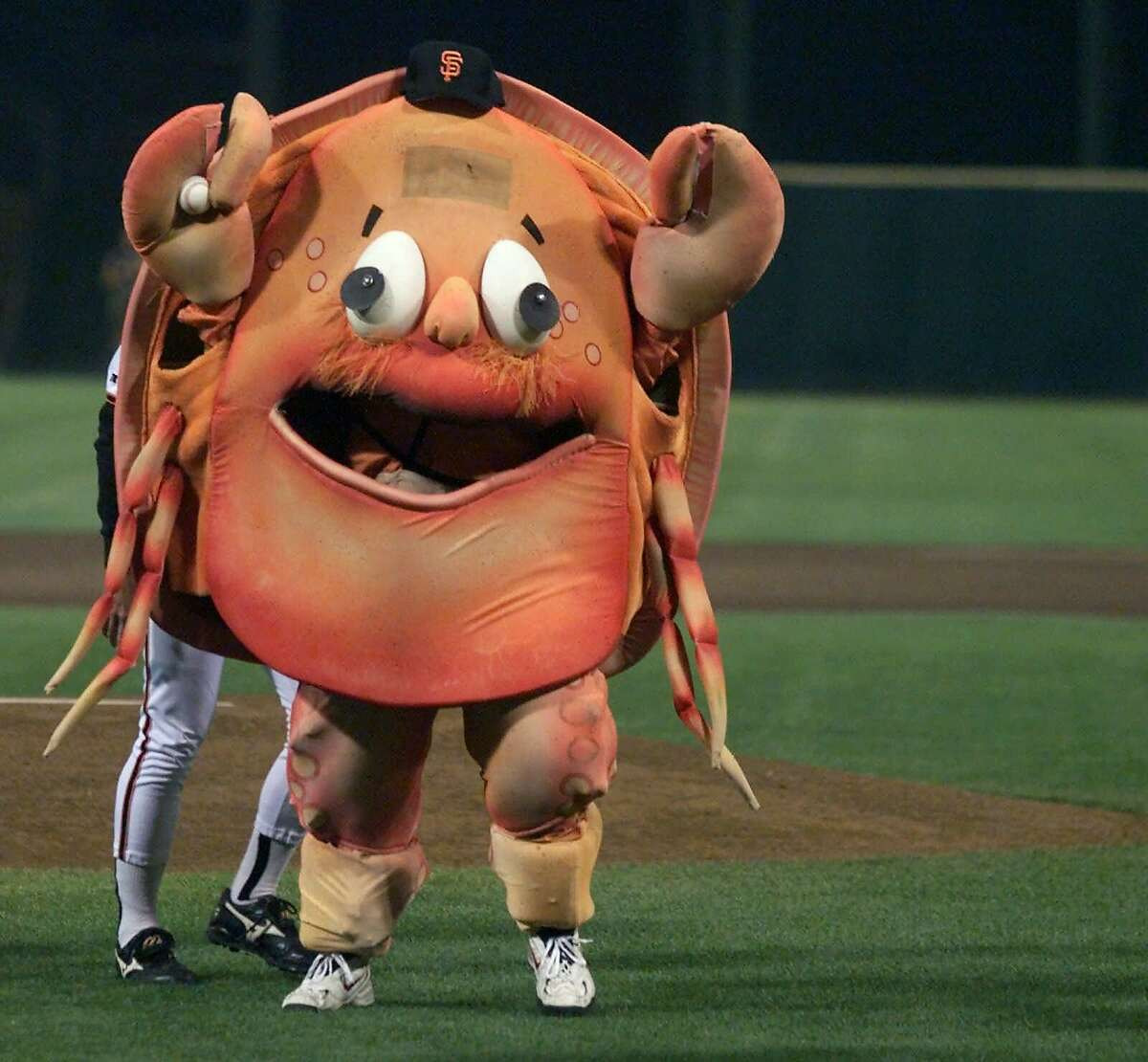 """Crazy Crab - San Francisco Giants The San Francisco Giants introduced Crazy Crab to Major League Baseball in 1984, toward the end of the mascot craze in professional baseball. The """"anti-mascot"""" was meant to parody other teams' attempts to introduce mascots to their fans in the late '70s and early '80s. The Crab, played by actor Wayne Doba, harshly criticized the team in interviews, and fans were encouraged to dislike and boo the crab. Fans obliged and went a few steps further. Sometimes they would throw beer bottles and batteries at Crazy Crab during his appearances on the field. With two games left in the Giants season, two players from the San Diego Padres went further still, attacking him on the field and injuring his back."""