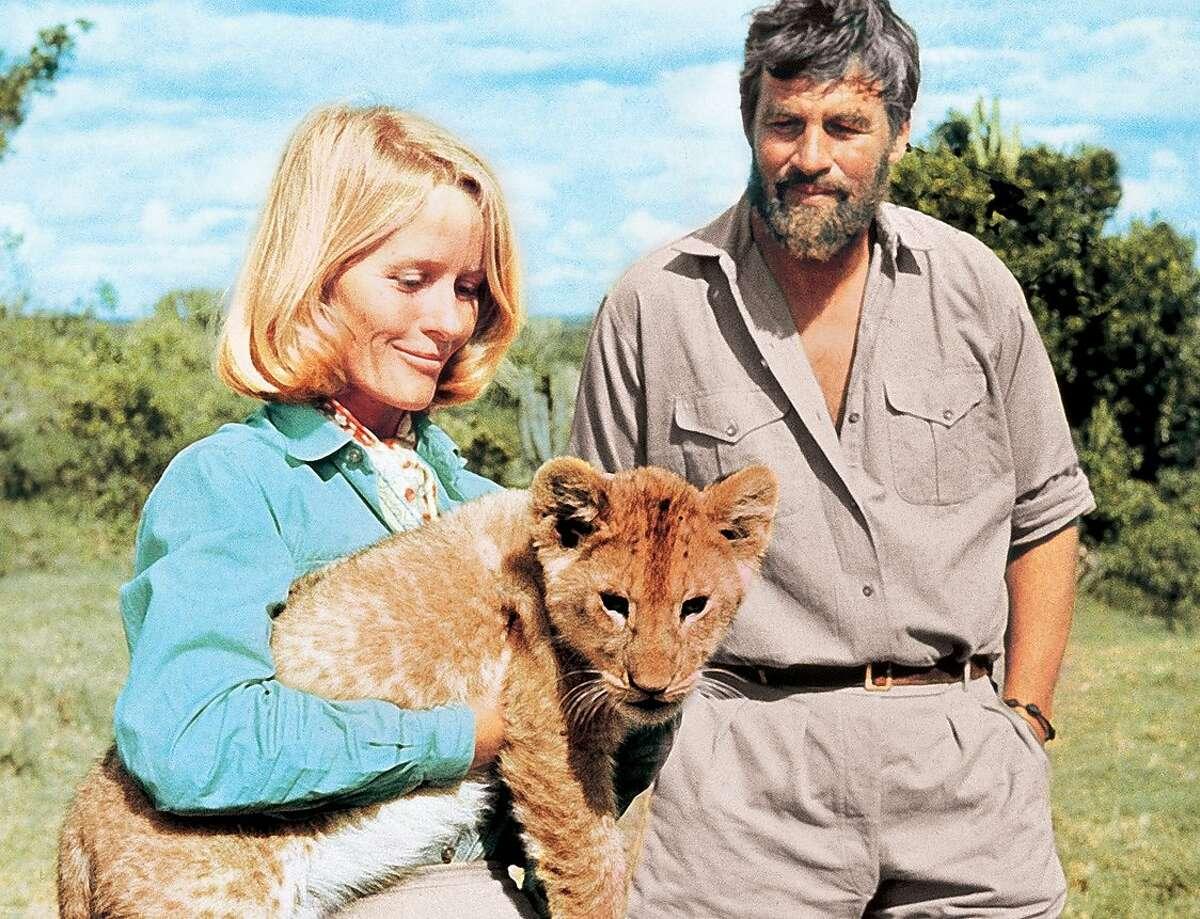 In the seminal wildlife film