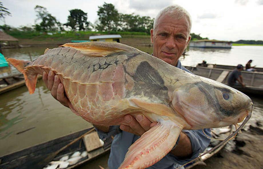 рыбалка речной монстр
