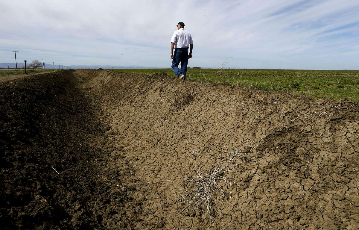 Farmer Shawn Coburn walks along a dry irrigation canal next to last years Alfalfa field in Firebaugh, Calif. on Friday March 07, 2014. The field will go unplanted due to the water shortage. With the current drought striking Northern California's central valley farmers are dealing with long-range concerns about water supplies and whether they will have enough to depend on to grow their crops in the years to come.