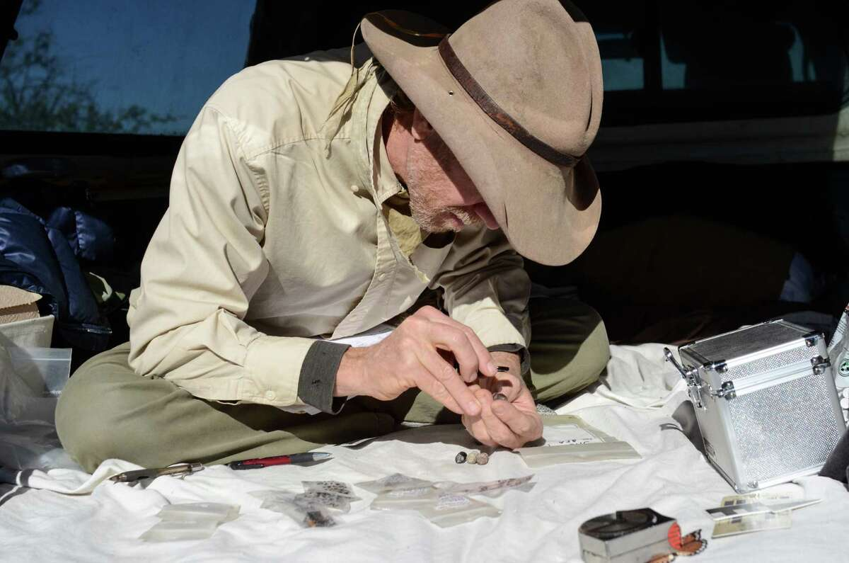 Archeologist David Keller examines artifacts including bullets recovered from the probably massacre site.