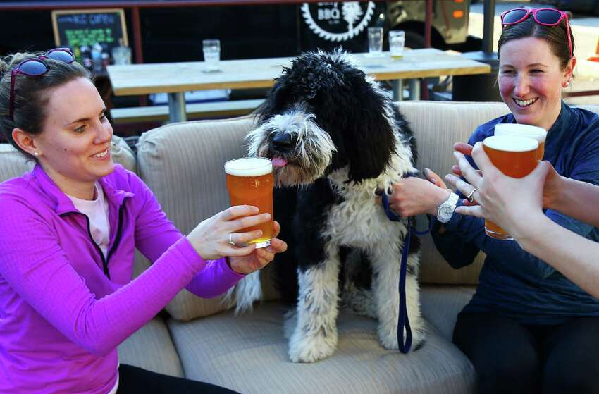 Sheepdog-poodle mix Sherman tries to sneak a sip of beer from Emily Fate, left, and Lindsey Foley at Hellbent Brewery in Lake City. Hellbent has an outdoor patio area with couches and a food truck parked outside.