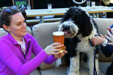 Sheepdog-poodle mix Sherman tries to sneak a sip of beer from Emily Fate, left, and Lindsey Foley at Hellbent Brewery in Lake City, Mar. 30, 2016. Hellbent has an outdoor patio area with couches and a food truck parked outside.