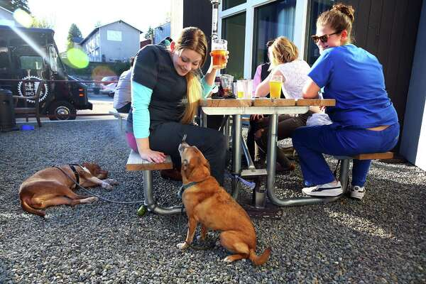 Melissa Borland, left, and Alexis Warner enjoy a drink at Hellbent Brewery with dogs Laela and Mouse, Mar. 30, 2016. The Lake City brewery has an outdoor patio area with couches and a food truck parked outside.