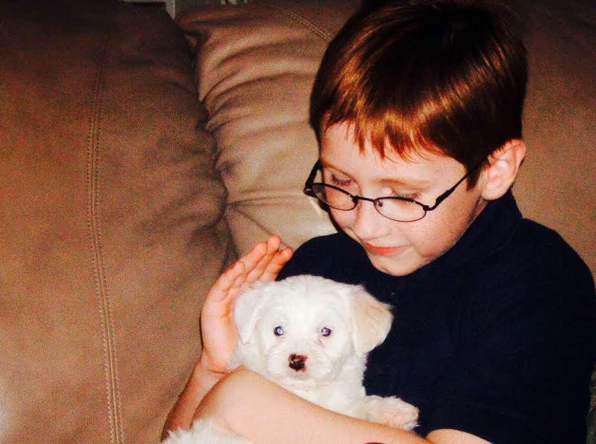 Dog meets boy: Auggie and Noah.