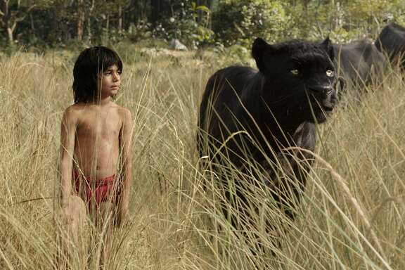 """Mowgli (Neel Sethi) with his friend and protector, big cat Bagheera (Ben Kingsley) in """"The Jungle Book,"""" opening at Bay Area theaters on Friday, April 16. Photo courtesy of Walt Disney Studios Motion Pictures."""