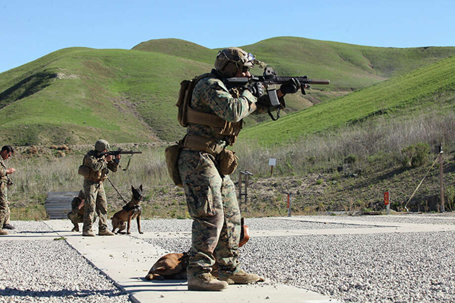 U.S.  Marine multipurpose canine handlers, with the United States Marine  Corps Forces Special Operations Command, aim during live-fire canine  training at Camp Pendleton, Calif., on Feb. 5. The Marines in this image  are equipped with later model holographic weapon sights. MUST CREDIT:  U.S. Marine Corps Photo by Lance Cpl. Roderick Jacquote Photo: U.S. Marine Corps Photo By Lance Cpl. Roderick Jacquote / Handout