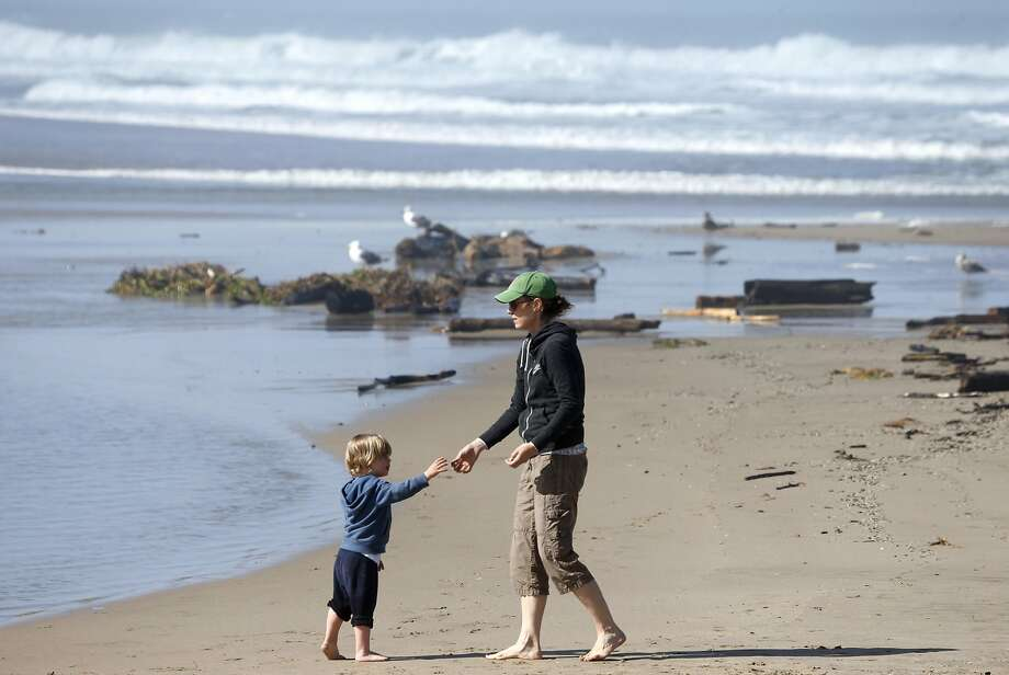 San Gregorio State Beach Photo: Paul Chinn, The Chronicle