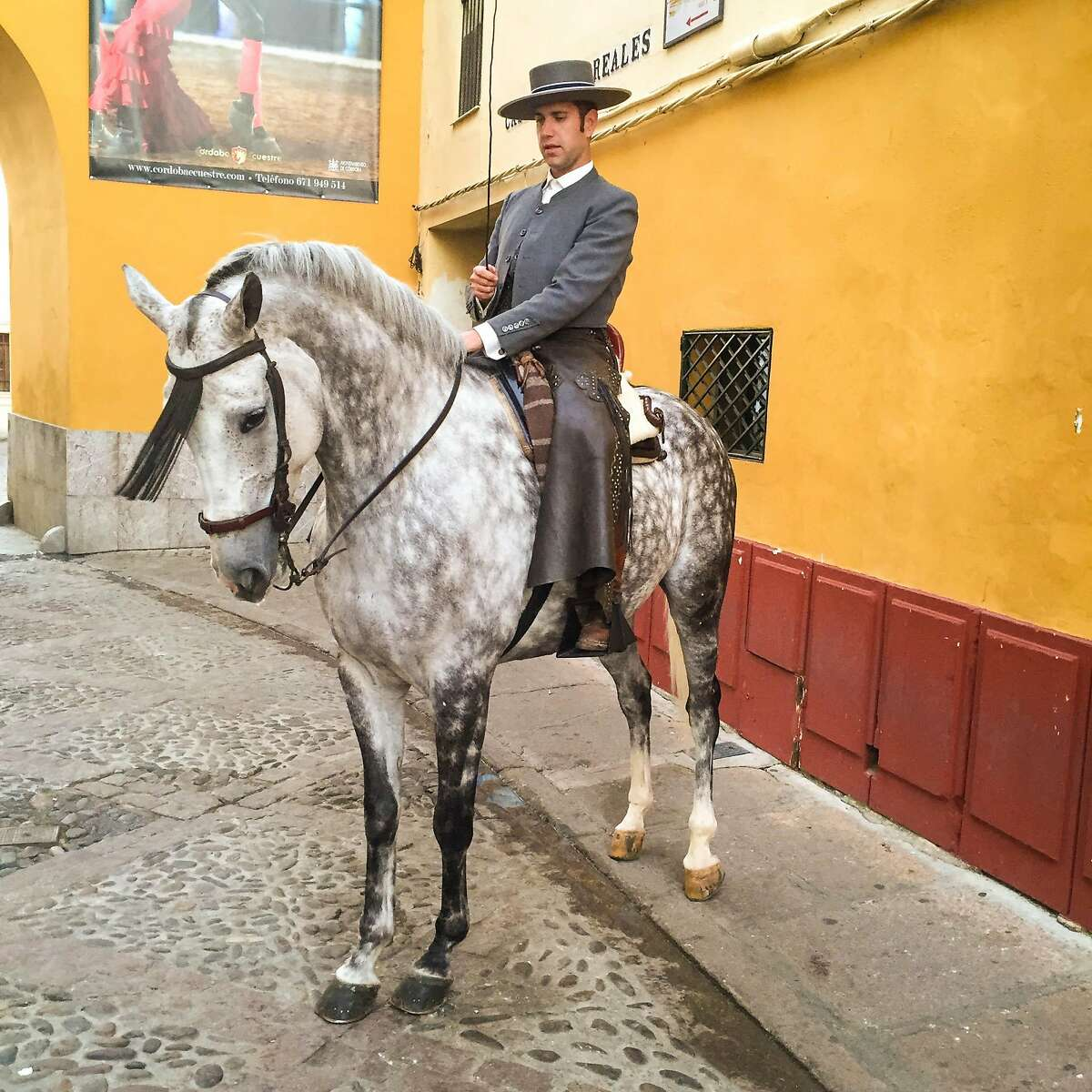 The Spanish horse known as the Andalusian horse is of Arab origin, and was originally bred in C�rdoba.