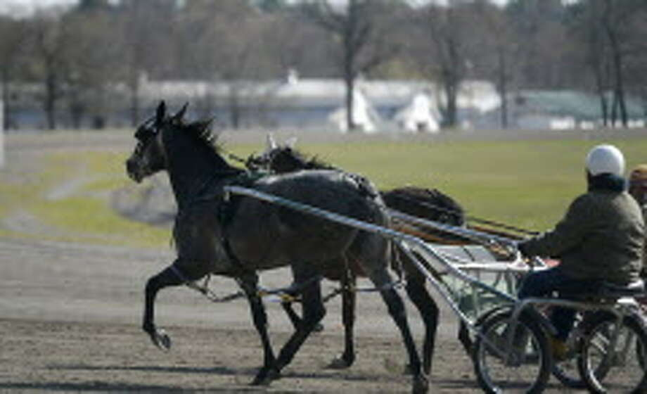 NY suspends 6 harness horse trainers - Times Union