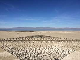 A creative resident at the Playa created this art installation many years ago near the shore of the alkaline lake east of the cabins.