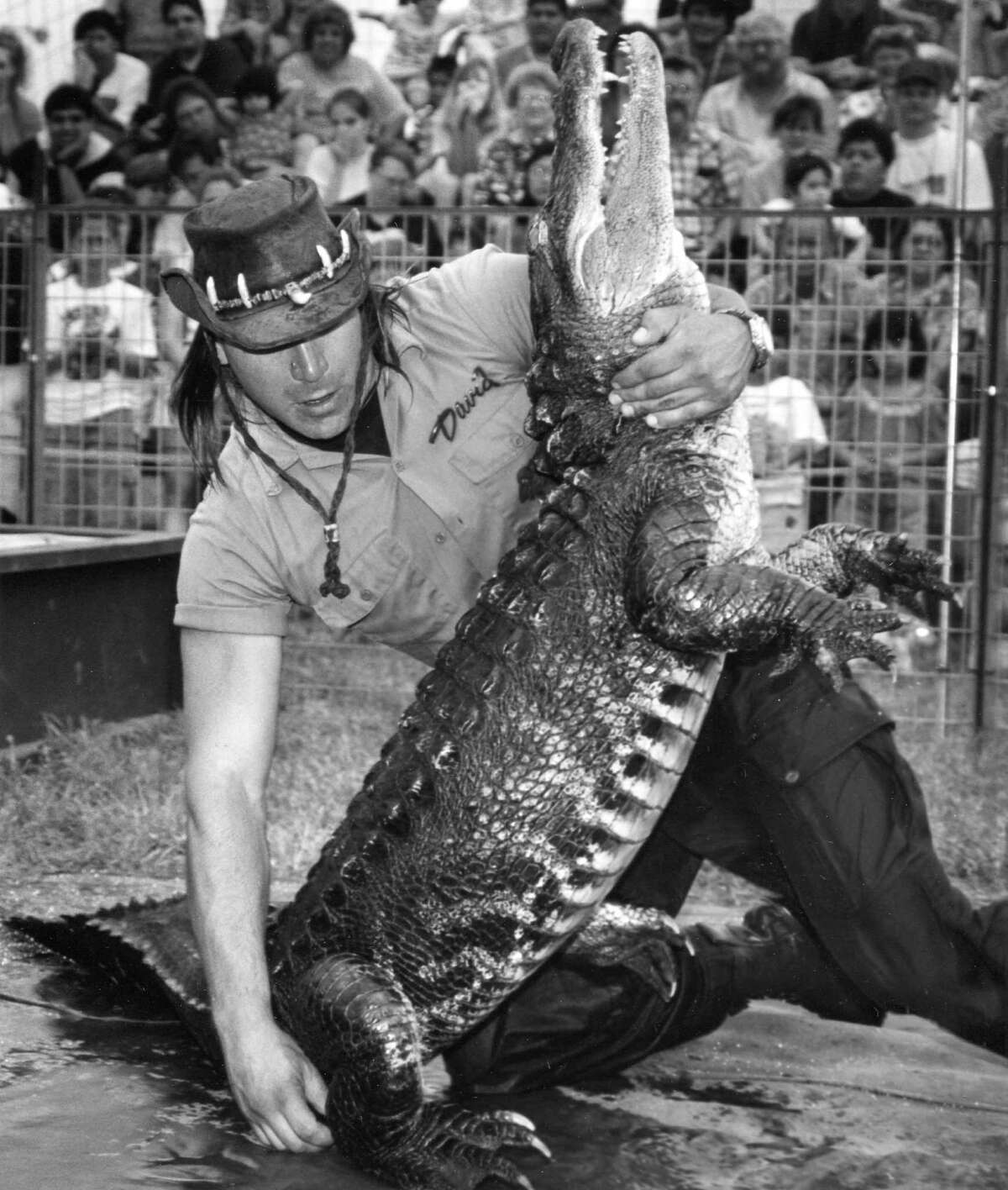 David Castillo of Sunken Garden, FL, holds an alligator during the