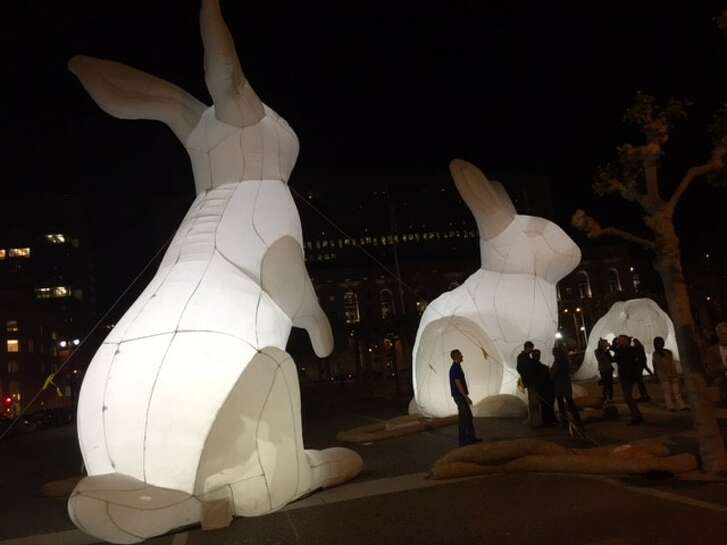 "Amanda Parer's ""Intrude,"" giant rabbits in the Civic Center."