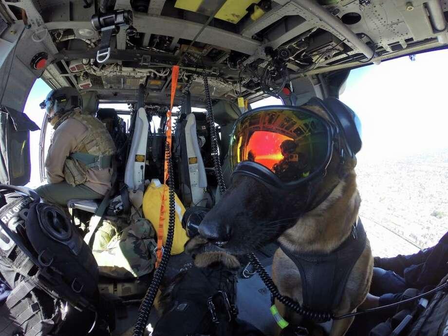 U.S. Coast Guard Maritime Safety & Security Team - 91105 Photo: U.S. Coast Guard Maritime Safety & Security Team - 91105 Facebook